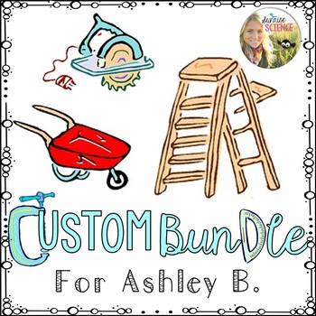 Custom Bundle for Ashley B.