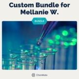 Custom Bundle for Mellanie W