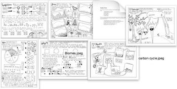 Custom Coloring Sheet Bundle 2: Newest Biology Items