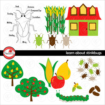 Learning about Stinkbugs Clipart by Poppydreamz