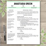CUSTOMIZABLE Mint Block Title Teacher Resume