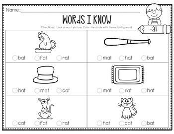 Cut, Match & Check - CVC Words - Short A