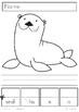 Cut Out, Create and Write Sentences - Activity Pages