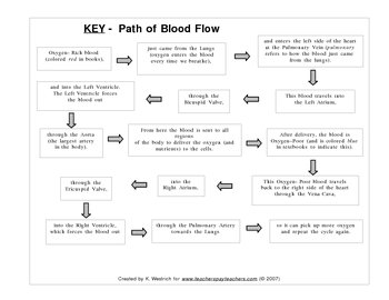 Cut & Paste Flowchart on the Path of Blood through the Heart