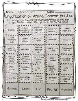 animal classification and animal characteristics sorts freebie tpt. Black Bedroom Furniture Sets. Home Design Ideas