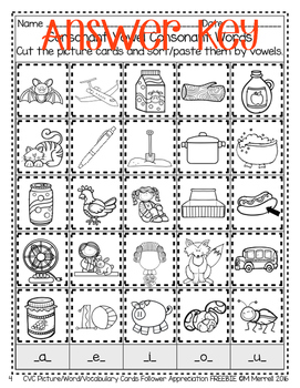 Cut and Paste CVC Picture, Word Sorts and Vocabulary Cards 1st Grade FREEBIE!