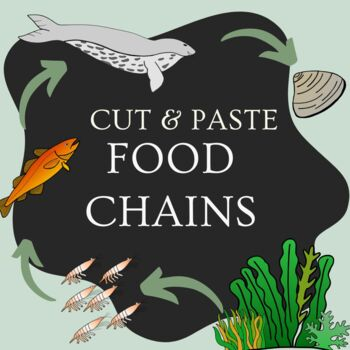 Cut and Paste Food Chains