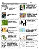 Cut-n-Paste Vocabulary: Evolution