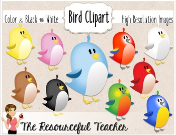 Cute Birds Clipart Bundle