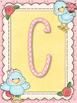 Cute Birds Yellow Alphabet Posters