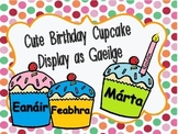 Cute Birthday Display as gaeilge (irish) / Míonna na Bliana