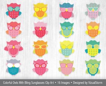 Cute Beach Owl Clip Art, 16 Hand Drawn Owls Wearing Sunglasses Illustration Set