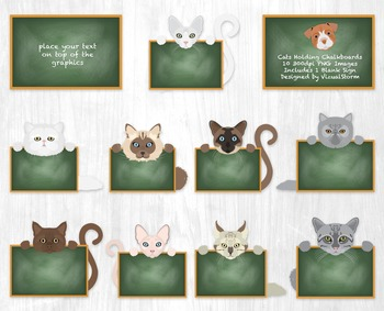Cute Cats Holding Signs Clipart, 10 Hand Drawn Elementary Classroom Graphics