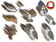Cute Falcon with Seasonal Accessories Clipart (Personal &