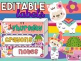 Cute Llamas Cactus Editable Labels | Name Tags | Mailbox | Sterilite Drawer