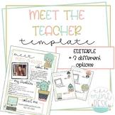 Cute Meet the Teacher Templates! Editable + 3 Different Styles