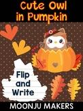 Cute Pilgrim Owl in Pumpkin  - Moonju Makers - Thanksgivin