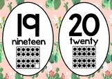 Cute Pink Cactus Number Line