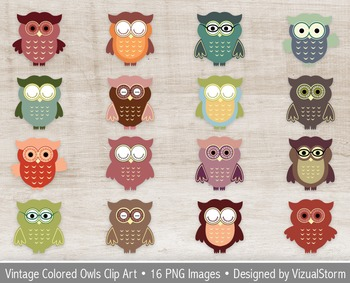 Cute Owl Clip Art, 16 Detailed Vintage Colored Owl Illustrations