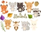 Cute Woodland Animals Clipart Set For Commercial And Personal Use