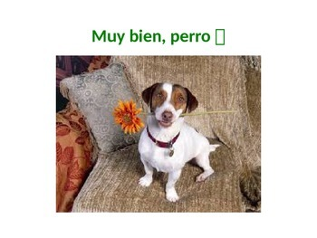 Cute activity for pets unit in Spanish