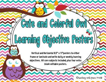 Cute and Colorful Owl Learning Objectives Posters (includi