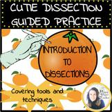 Dissection Activity Bundle