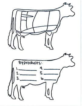 Cuts of Beef and Cow Byproducts