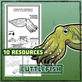 Cuttlefish -- 10 Resources -- Coloring Pages, Reading & Activities