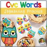 Owls CvC Words Phoneme Segmentation Game