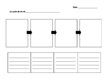 Cycle de Vie - Life Cycle Worksheet