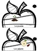 Le cycle de vie d'une pomme - Apple Tree Life Cycle (French)