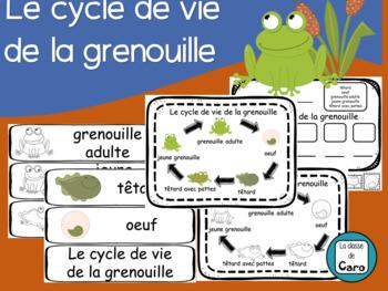 Cycle de vie de la grenouille - Imprimable (FRENCH FSL FLI)
