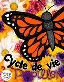 Cycle de vie - le papillon