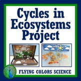 Cycles of Matter in Ecosystems Ecology Project Activity NGSS MS-LS1-6 MS-LS2-3