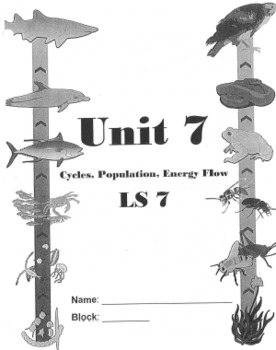 Cycles, Population, and Energy Flow Unit