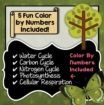 Cycles in Nature - Color By Number Bundle - Save over 35%