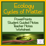 Cycles of Matter: PowerPoint, Student Guided Notes, and Worksheet