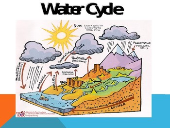 Cycles of Matter, Limiting Factors, and Population Growth