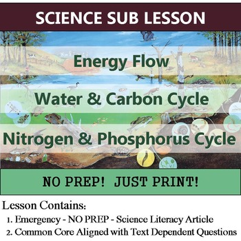 Cycles of Matter Science Sub Plan - Energy Flow (Homework or Enrichment)