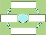 Cycling Events Graphic Organizer