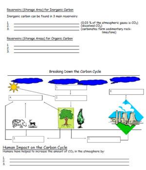 Cycling of Matter (Carbon, Nitrogen, Phosphorous) Student Note & Teacher Smartbo