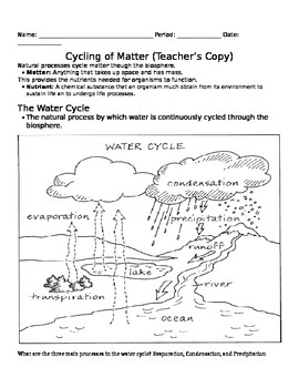 Cycling of Matter Notes