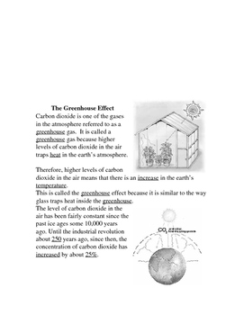 Cycling of Matter Notes Word Document