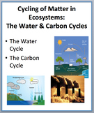 Cycling of Matter - The Water and Carbon Cycle PowerPoint Lesson