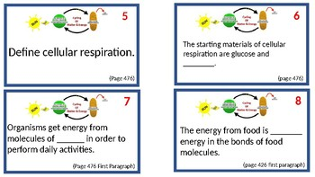 Cycling of Matter and Energy Task Cards