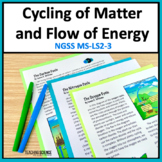 Cycling of Matter and Flow of Energy NGSS MS-LS-3 and Utah SEEd 6.4.3