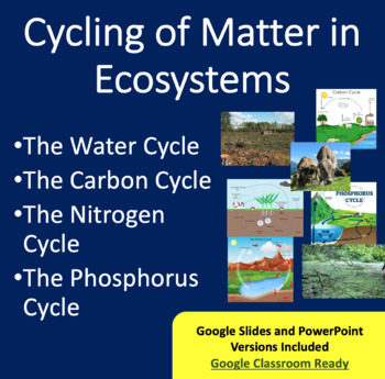 Cycling of Matter in Ecosystems Lesson - PowerPoint Lesson and Activity Package