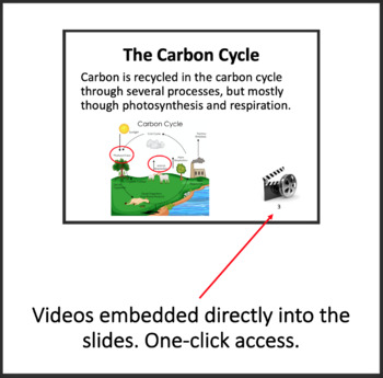 Cycling of Matter in Ecosystems - Google Slides and PowerPoint Lesson