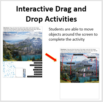 Cycling of Matter in Ecosystems - Digital Interactive Notebook Pages